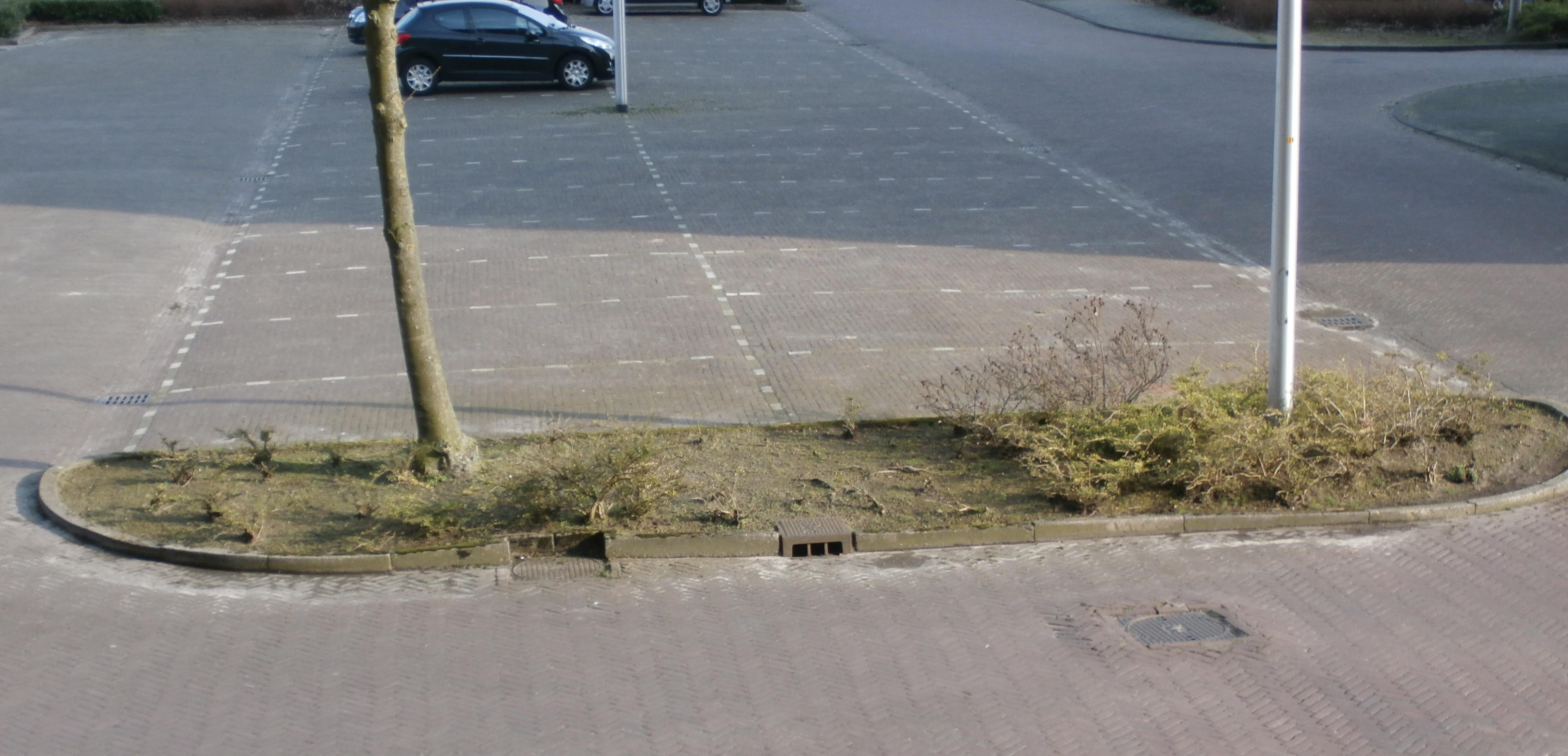 bordersleunenberg1